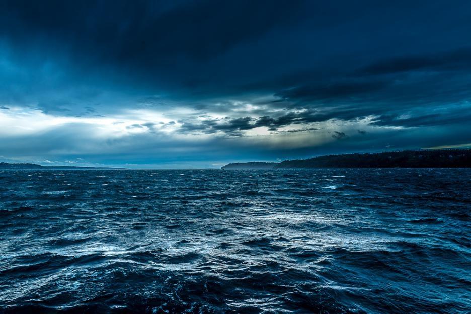 8 юние Световенден на океана.Идеятае да се информира обществото за проблемите с опазването на океаните икак всеки човек може да помогне за тази кауза.Първото...