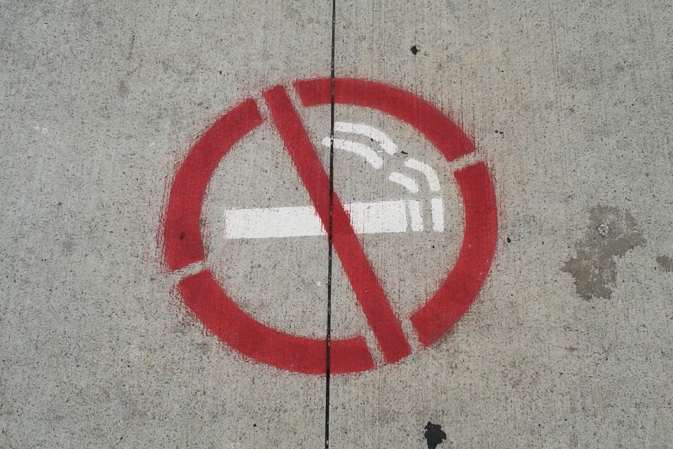 """Днес е Международният ден без тютюнопушене. У нас инициативата тази година протича под мотото """"Да спечелим заедно: един ден без цигари!"""". Заради пандемията..."""
