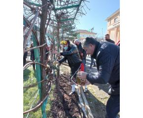 Днес се проведе шестнадесетият общински празник на виното (снимки)