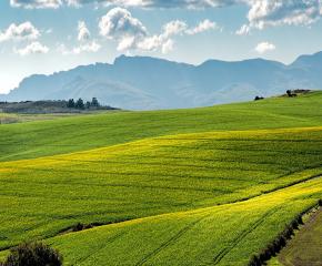 Днес срокът за преброяване на земеделските стопанства у нас свършва
