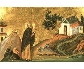 Днес църквата почита преп. Исидор Пелусиотски