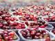 До 120-дневен договор за берачи на череши в Кюстендилско