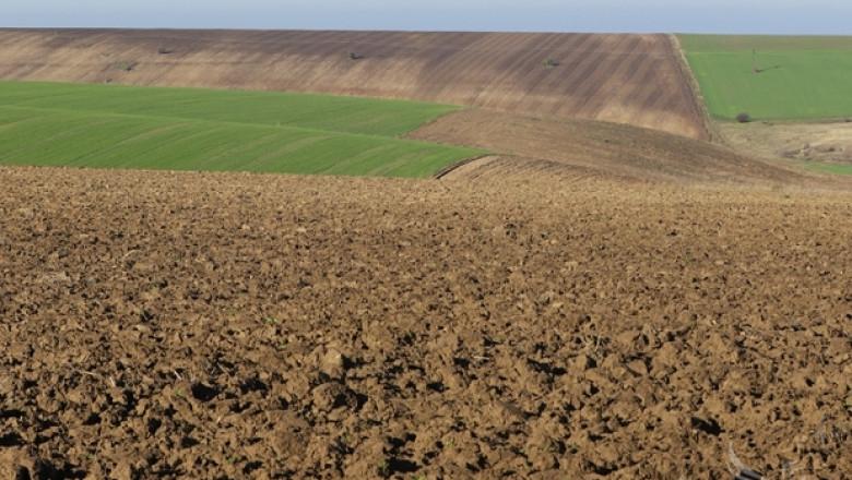 От вчера до 13 декември земеделските стопани могат да проверят дали заявените от тях площи попадат изцяло или частично в обхвата на проекта на специализирания...