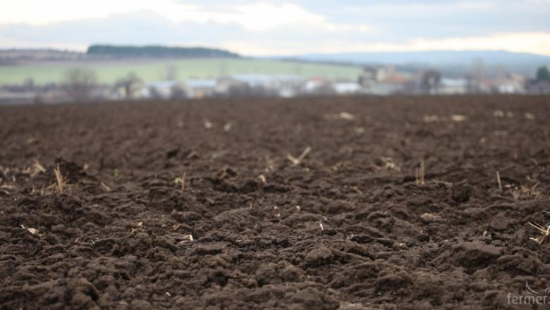 """Есенниците в Ямболска област, които бяха засети в началото на октомври, са в много добро състояние, съобщи на БТА директорът на областната структура """"Земеделие""""..."""