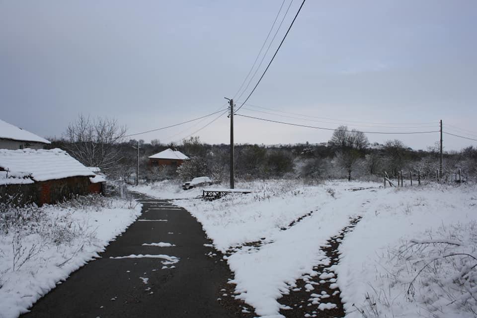 Въпреки заснежените пътища и усложнената зимна обстановка в община Болярово, общинската администрация е създала организация хляб и храна да бъде доставена...