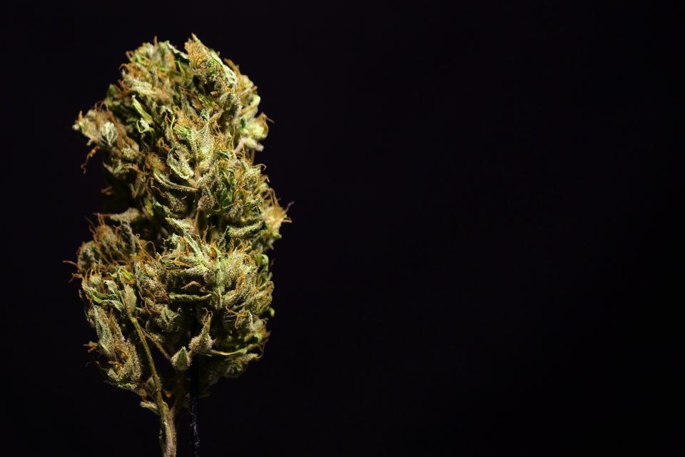 Акция с цел превенция и противодействие на престъпления, свързани с наркотични вещества, в и около учебни заведения, както и контрол на криминалния контингент...