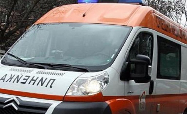 """43-годишен мъж от село Градец е пострадал от паднало върху главата му дърво. Той е настанен в Отделението по реанимация на МБАЛ """"Д-р Иван Селимински""""-Сливен..."""