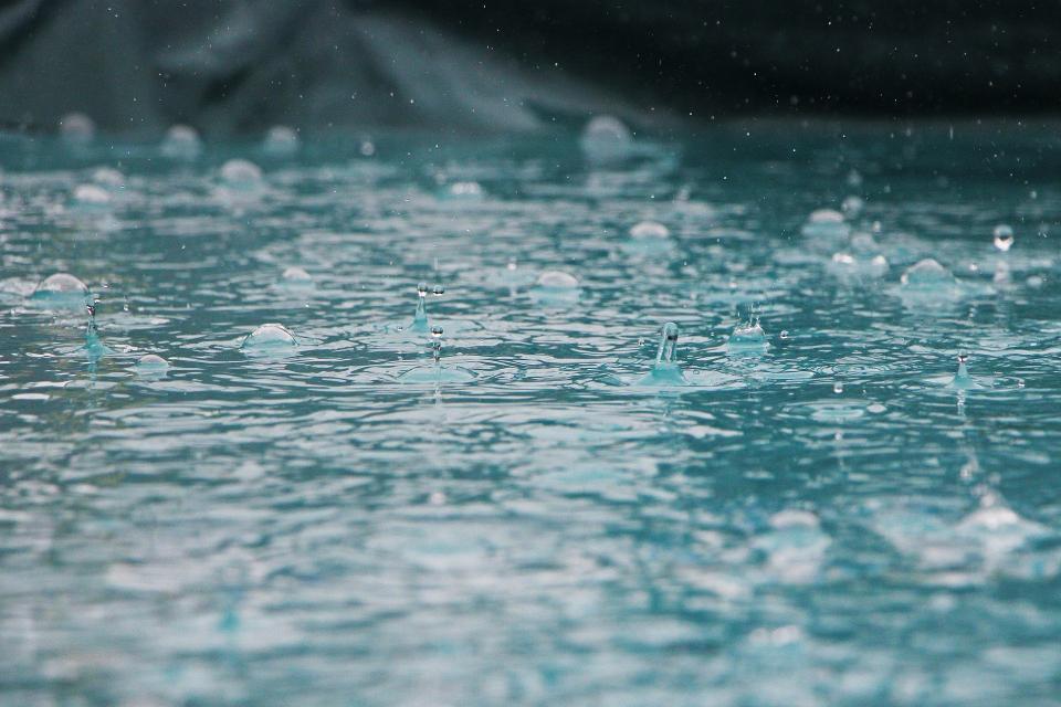 Днес ще започнат валежи от дъжд, първо в Югозападна България, а до вечерта и в Централна. Ще духа слаб до умерен североизточен вятър. Максималните температури...