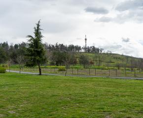 """Екоинициатива за почистване на парк """"Боровец"""""""