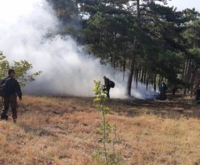 Голям пожар вилнее над старозагорското село Дълбоки