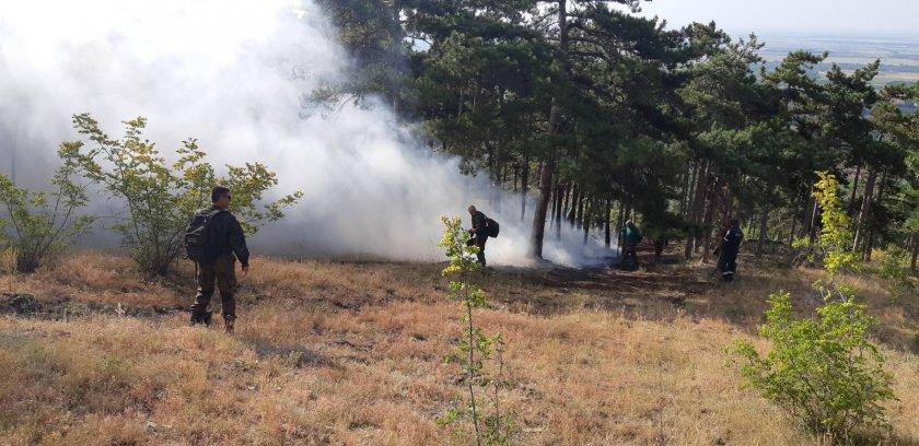 Безсънна нощ за пожарникарите, които се борят с огъня край старозагорското село Дълбоки, съобщава БНТ. В гасенето се включи и армията. Мястото е труднодостъпно...