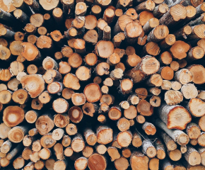 Горските ще конфискуват дърва за огрев, купени без документи
