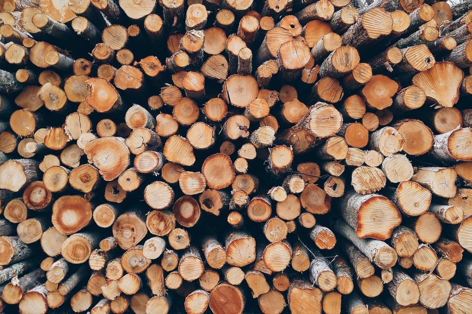 Горските инспектори имат право да конфискуват дърва за огрев, които са закупени без документи, предупреждават от природозащитната организация Световен...