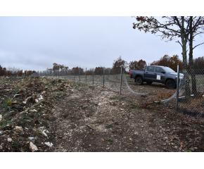 Горските залесиха 40 декара гора край с. Денница
