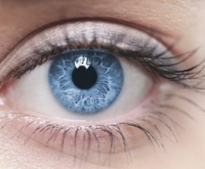 Графикът за записване за безплатни очни прегледи в Сливен се запълни