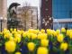 Хиляди цветя украсяват Ямбол (СНИМКИ)