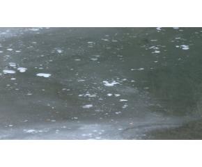 Измерените нива на цианиди във водите на реките Юговска и Чепеларска са в пъти над допустимите норми