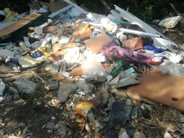 Плаващо сметище и по коритото на река Струма се образува след пороите у нас. Хора от Кюстендил събраха над 1 тон боклук само в един речен участък. От водата...