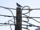 Катастрофа в електрически стълб затвори пътя Велико Търново-Гурково