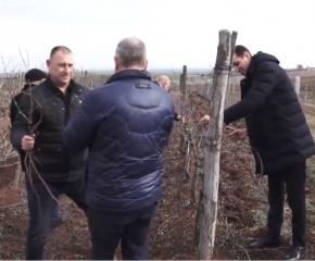 Кметът на община Ямбол заряза лозето в село Ботево (видео)