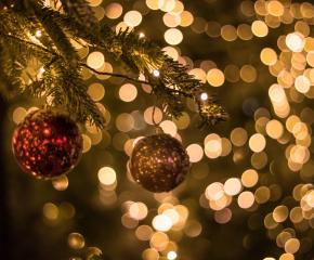 Коледната елха в Ямбол ще грейне на 10 декември