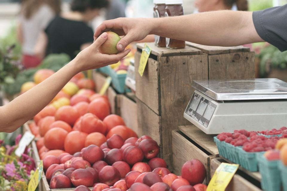 Вносът на плодове и зеленчуци в България расте, като само през първото тримесечие страната ни е внесла 88 000 тона пресни зеленчуци и близо 95 000 тона...