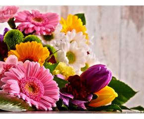 Купи цвете - помогни на двойки с репродуктивни проблеми
