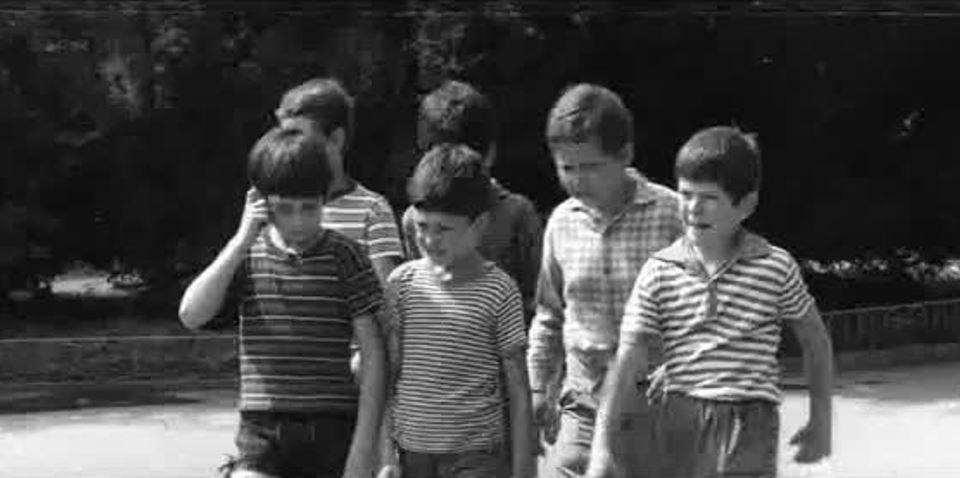 """Поредна лятна киновечер за Ямбол. Днес е ред на """"Таралежите се раждат без бодли"""" по сценарий на Братя Мормареви. Свободата на децата срещу възпитанието..."""
