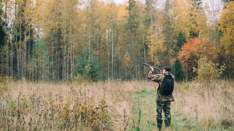 Забранен е ловът, сечта, брането на билки и гъби, както и пребиваването на хора в боляровското село Камен връх, заради потвърдената преди дни проба за...