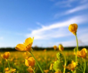 Майското лято продължава и през почивните дни