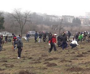 """Мисия """"Залесяване на Боровец"""": Стотици се включиха (ВИДЕО)"""