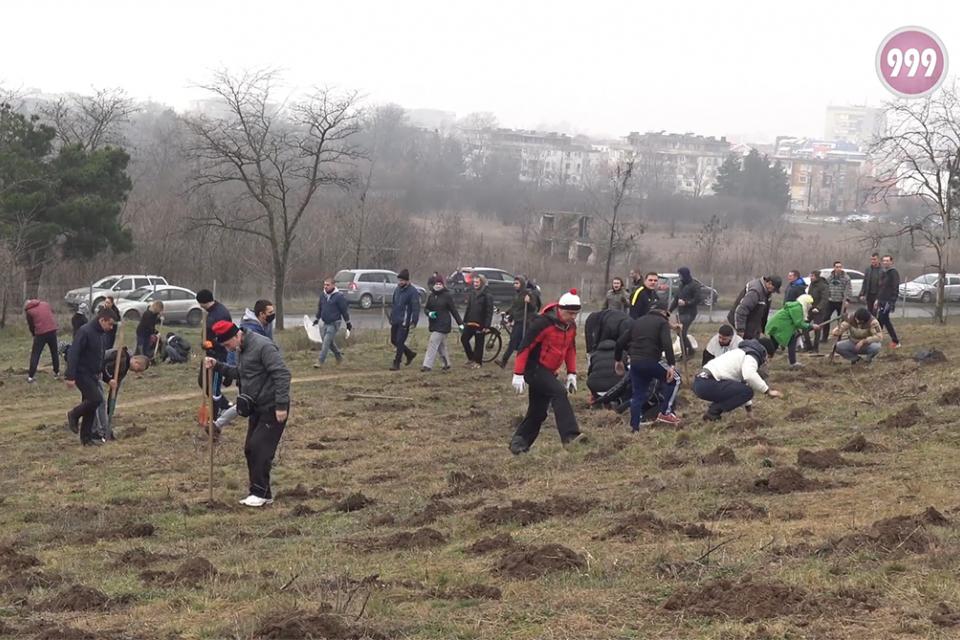 Стотици жители и гости на Ямбол се включиха в залесяването на парк Боровец в съботното утро. Заради огромния брой хора, акцията приключи за по-малко от...