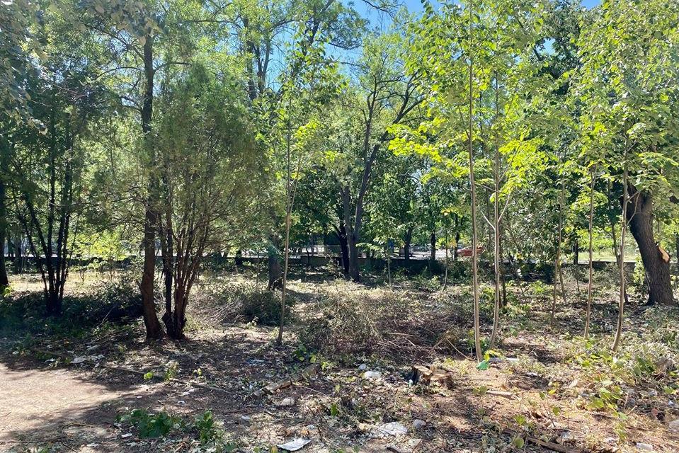 """Общинско Предприятие """"Паркове и зони за отдих и спорт"""" в Ямбол набира доброволци за почистването на пространството около Опитната станция по земеделие,..."""