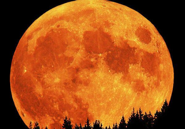 Тази вечер се загледайте в нощното небе, ще има нещо уникално. В нощта на 7 срещу 8 април ще сме свидетели на явлението Супер Луна. Това каза физикът...