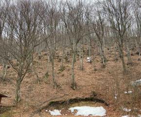 Намериха телата на издирваните старозагорци изчезнали под връх Ботев