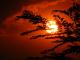 НАСА потвърди: 2020-та е най-горещата досега