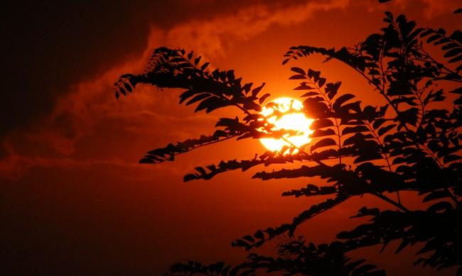 2020-та година е най-горещата година регистрирана някога,показват данните на НАСА. Средната температура в глобаленмащаб през миналата година е била с...