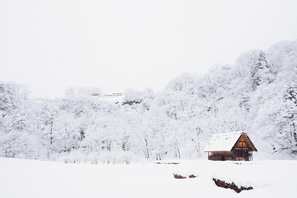 За общи мерки срещу разпространението на COVID-19 в зимните курорти настояват от Националния борд по туризъм, съобщава БНР. Предложението е мерките да...