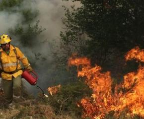 Нека пазим горите от пожари!