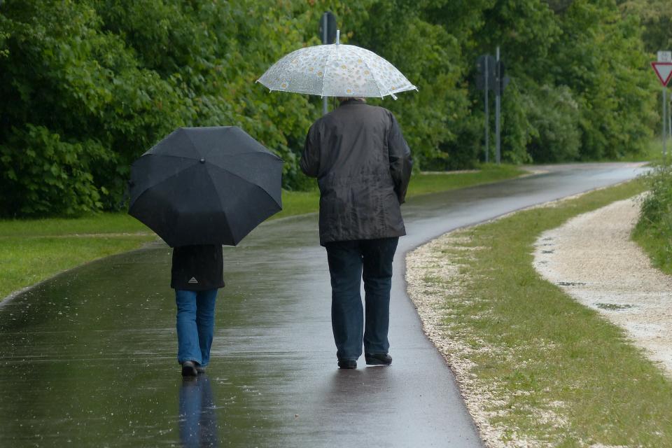 Днес ще е предимно облачно, на много места с превалявания от дъжд, по-значителни в Западна България. В североизточните райони ще е почти без валеж. Ще...