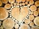 Община Болярово отново отпуска безплатно дърва за лекари
