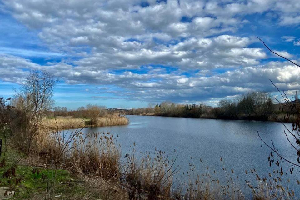 """Община Ямбол съобщава, че дейностите по облагородяването на Гребния канал в Ямбол продължават.На 11 февруари (утре) служители на Общинско предприятие """"Паркове..."""