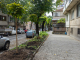 Община Ямбол продължава да засажда нови дървета по улиците на града