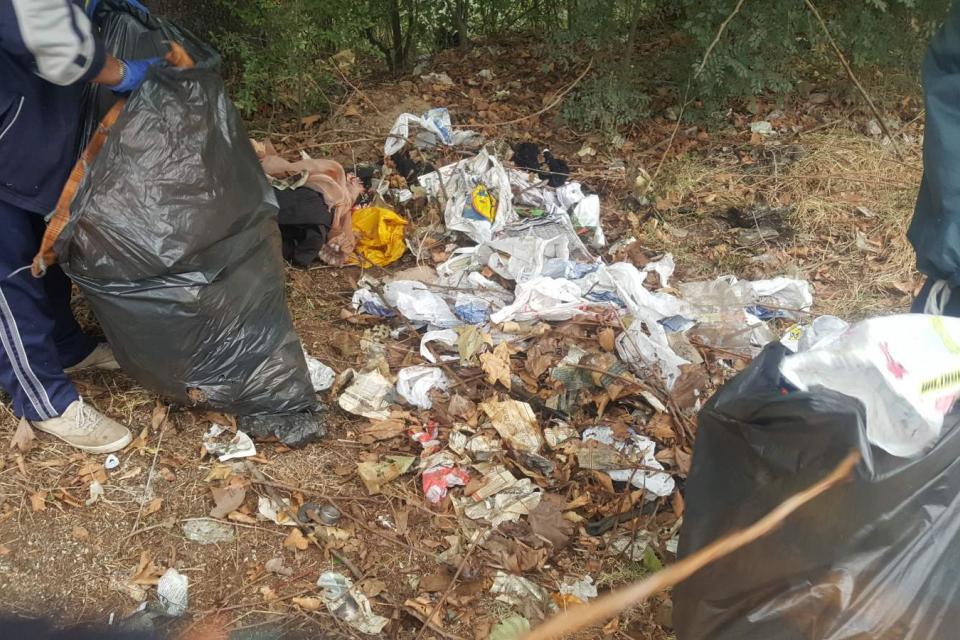 """Служители на Общинско предприятие """"Паркове и зони за отдих"""" почистват незаконни сметища на територията на община Ямбол. Те вече разчистиха струпани отпадъци..."""
