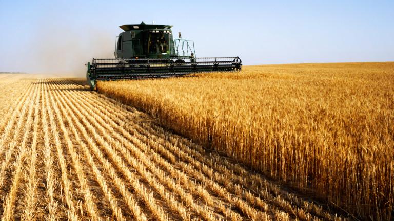 С около 40% по-ниски добиви от пшеница в сравнение с миналата година очакват в област Добрич. Основните причини са големите температурни амплитуди и сушата. Според...