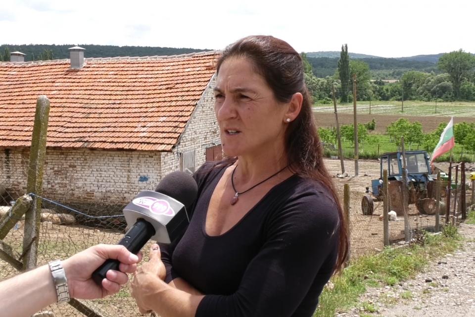С решение от 17.06.2020 Върховният административен съд отмени заповедта на ОДБХ – Ямбол за допускане на ветеринари във фермата на Ана Петрова, които да...
