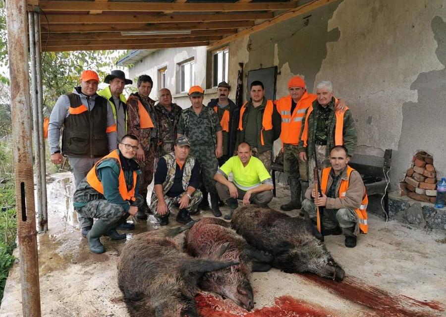 На 5 октомври стартирагруповият лов на дива свиня.По време на новия сезон ловът ще бъде разрешен три дни седмично, вместо досегашните два дни. Това съобщиха...