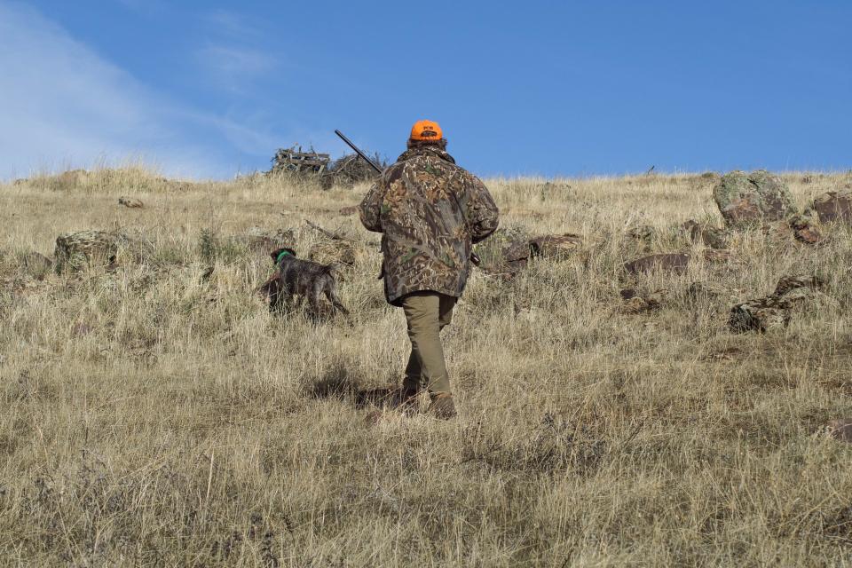 Откриването на ловния сезон 2021/2022 г. на местен дребен и едър дивеч и груповият лов на дива свиня ще бъде на 2 октомври 2021 г. Груповото ловуване...
