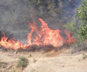 Овладяха пожара в Свиленградско