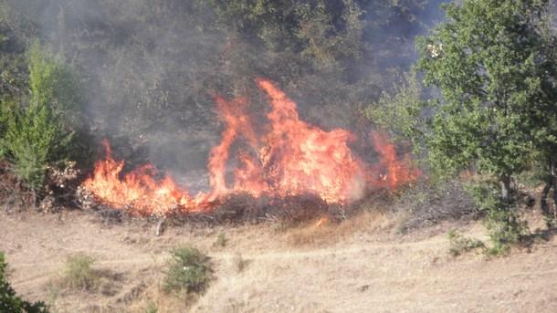 Пожарът в Свиленградско е овладян, информират от областната администрация в Хасково, цитирани от БНР. Част от тежката техника, която работеше по прокарването...
